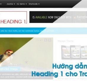 heading-1-homepage