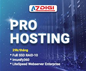 Pro hosting