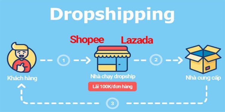 dropship-hinh-1
