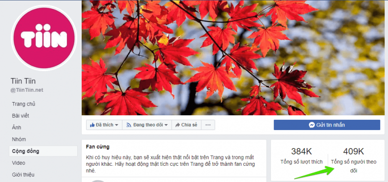 follow-nhieu-van-khong-duoc-cap-tich-xanh-3